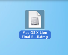 DVD_Lion6